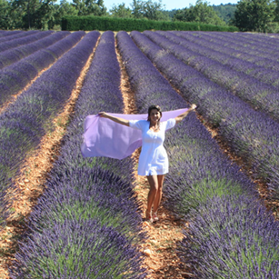 Gorgeous elegant lady walking through the lavander fields in the Provence France by Omnimundi